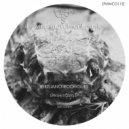 Giuliano Rodrigues - Dub System (Original Mix)