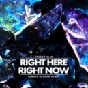 Fatboy Slim - Right Here Right Now (Fender Bender Remix)
