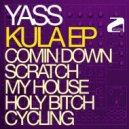 Yass - Coming Down  (Original Mix)