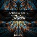 Andrew StetS - Shalom (Original Mix)