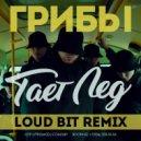 Грибы - Тает Лёд (Loud Bit Remix)