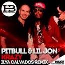 Pitbull feat. Lil Jon - Krazy (Ilya Calvados Radio Remix)