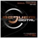Minitronix - Soul Hound (Reel to Reel Remix)